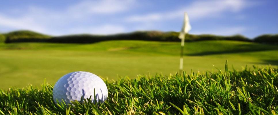 Area Golf Courses